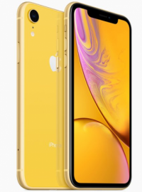iphone_xr_yellow